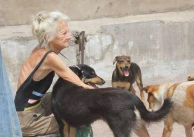 Hommage à Mareis : Une cagnotte pour rendre hommage à « la dame aux chiens »